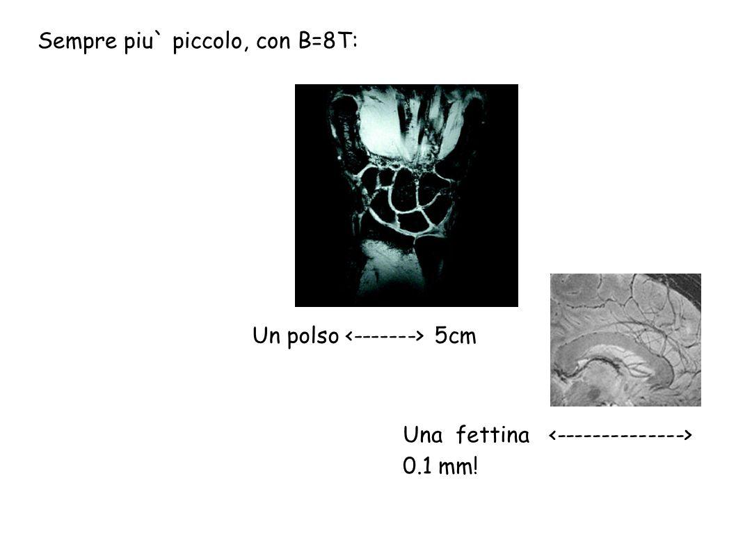 Un polso 5cm Una fettina 0.1 mm! Sempre piu` piccolo, con B=8T: