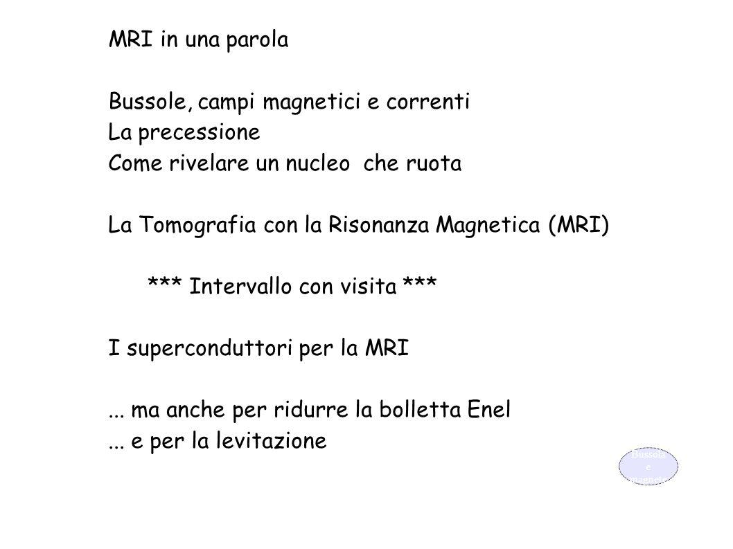 MRI in una parola Bussole, campi magnetici e correnti La precessione Come rivelare un nucleo che ruota La Tomografia con la Risonanza Magnetica (MRI)