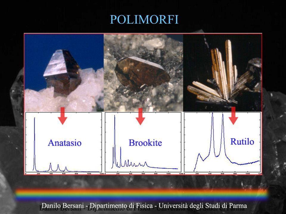POLIMORFI