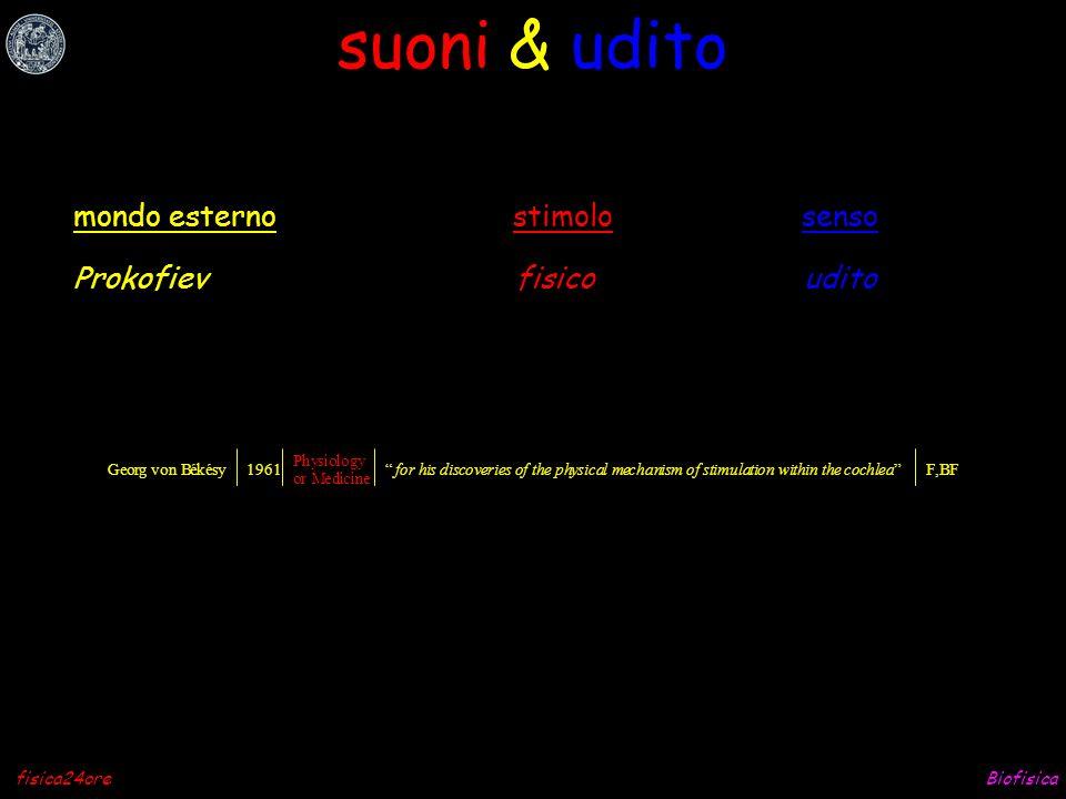 Biofisicafisica24ore stimoli & sensi Prokofiev Picasso Braille culatello Chanel 5 fuoco fisicoudito fisicovista fisicotatto chimicogusto chimicoolfatto fisicotermocettori mondo esternostimolosenso biofisica e fisiologia