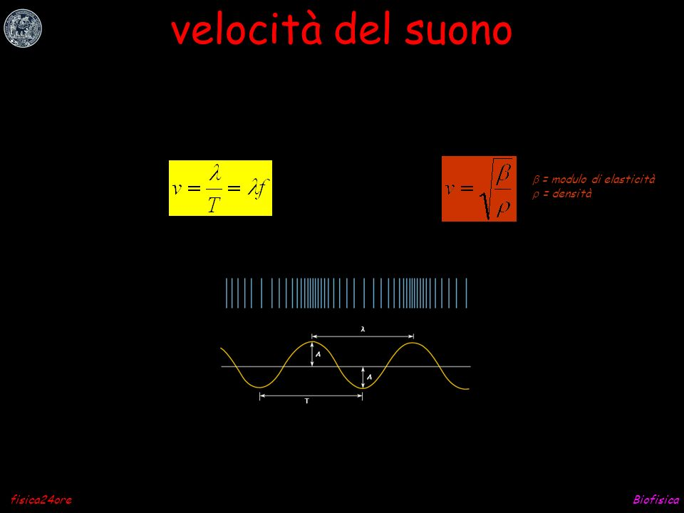 Biofisicafisica24ore onda acustica T = periodo (durata di un ciclo, [sec]) f = frequenza (quanti cicli nellunità di tempo, [sec] -1 ) = lunghezza donda (lo spazio di un ciclo, [nm])