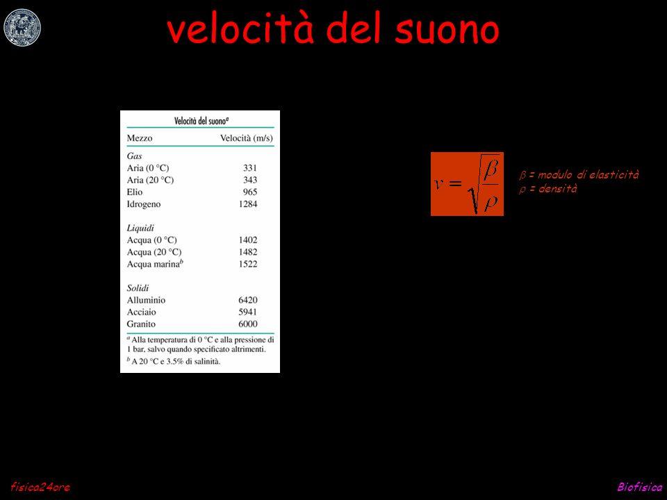 Biofisicafisica24ore velocità del suono = modulo di elasticità = densità