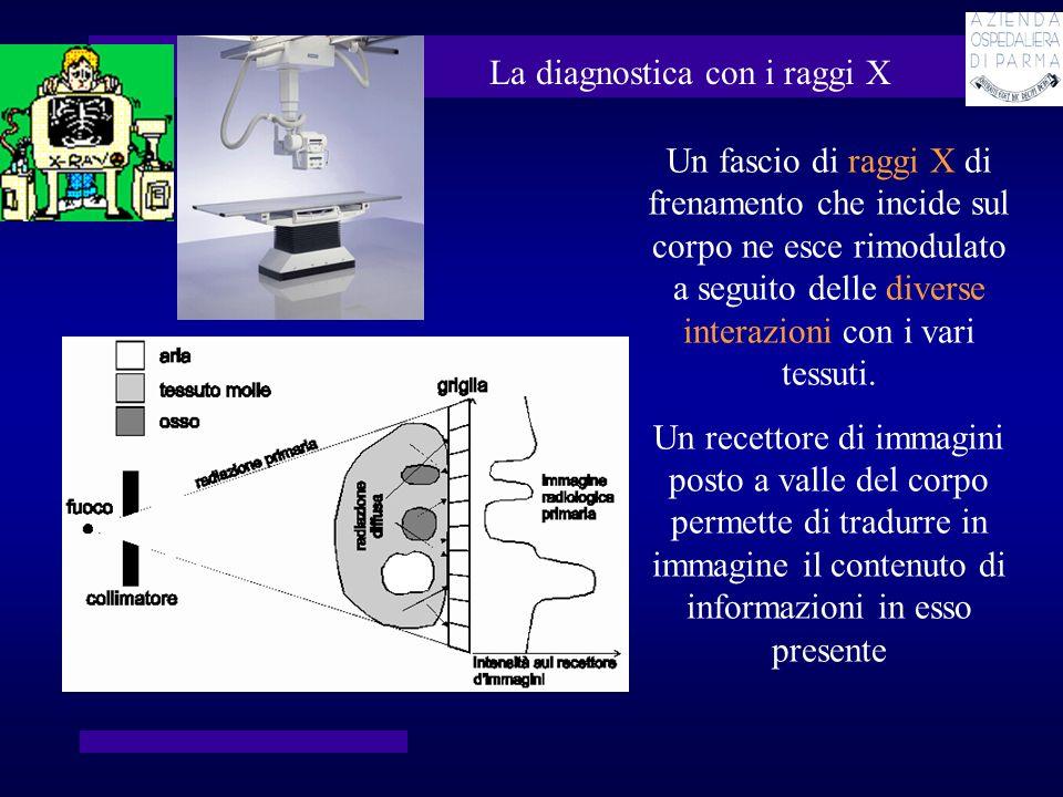 La diagnostica con i raggi X Un fascio di raggi X di frenamento che incide sul corpo ne esce rimodulato a seguito delle diverse interazioni con i vari