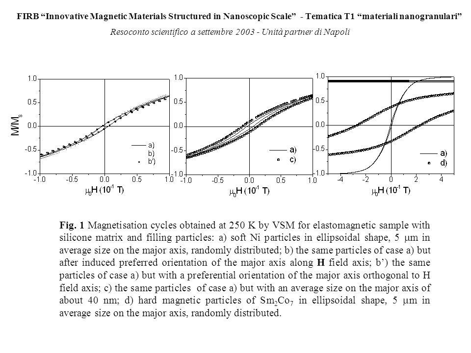 FIRB Innovative Magnetic Materials Structured in Nanoscopic Scale - Tematica T1 materiali nanogranulari Resoconto scientifico a settembre 2003 - Unità partner di Napoli Fig.