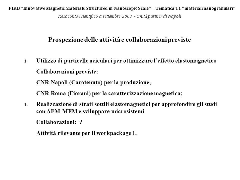 FIRB Innovative Magnetic Materials Structured in Nanoscopic Scale - Tematica T1 materiali nanogranulari Resoconto scientifico a settembre 2003.- Unità