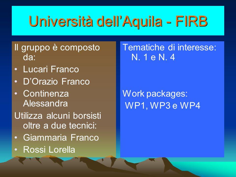 Università dellAquila - FIRB Il gruppo è composto da: Lucari Franco DOrazio Franco Continenza Alessandra Utilizza alcuni borsisti oltre a due tecnici: