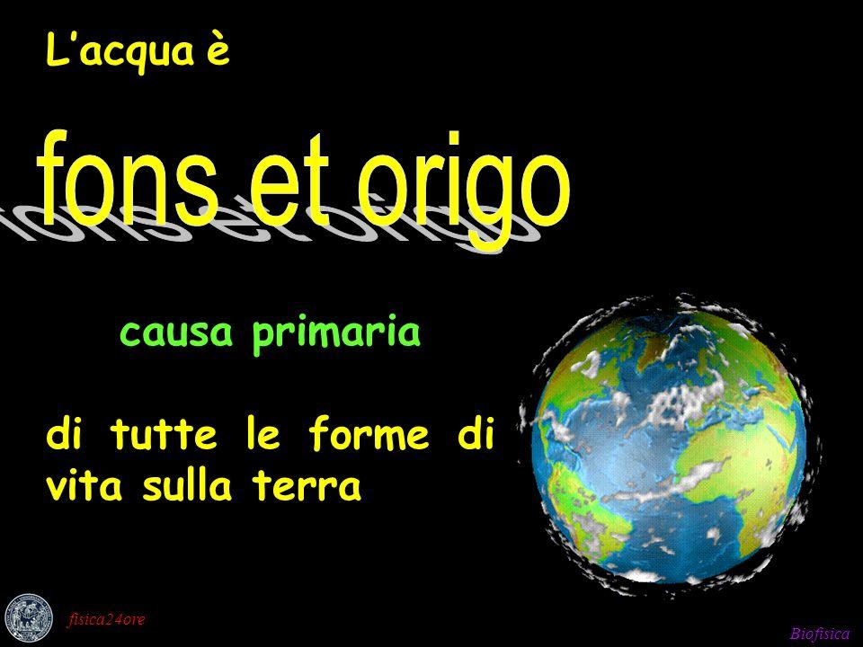 Biofisica fisica24ore Lacqua è causa primaria di tutte le forme di vita sulla terra