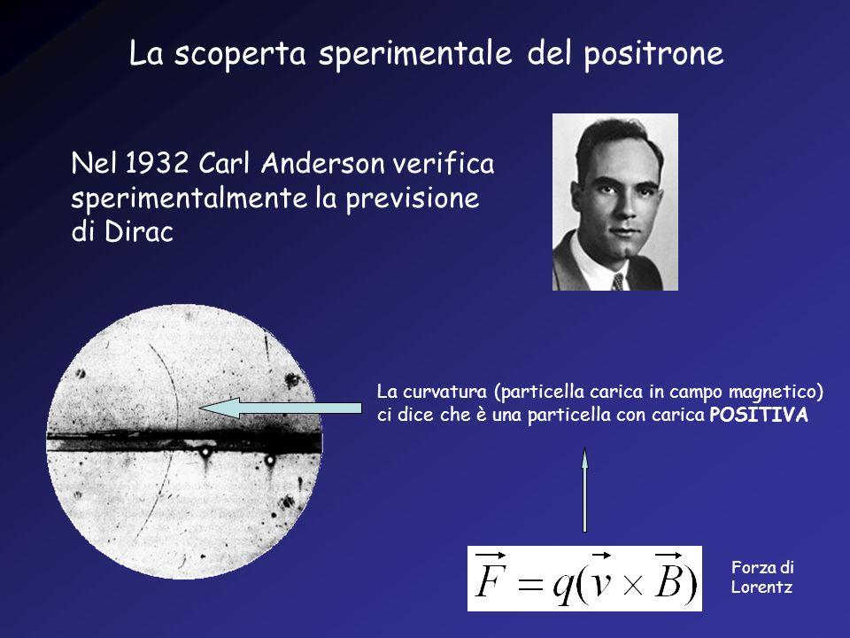 La scoperta sperimentale del positrone Nel 1932 Carl Anderson verifica sperimentalmente la previsione di Dirac La curvatura (particella carica in camp