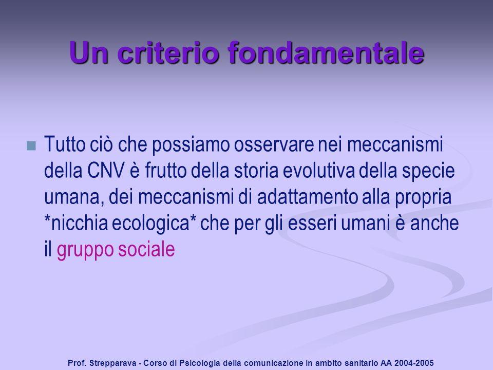 Prof. Strepparava - Corso di Psicologia della comunicazione in ambito sanitario AA 2004-2005 Un criterio fondamentale Tutto ciò che possiamo osservare
