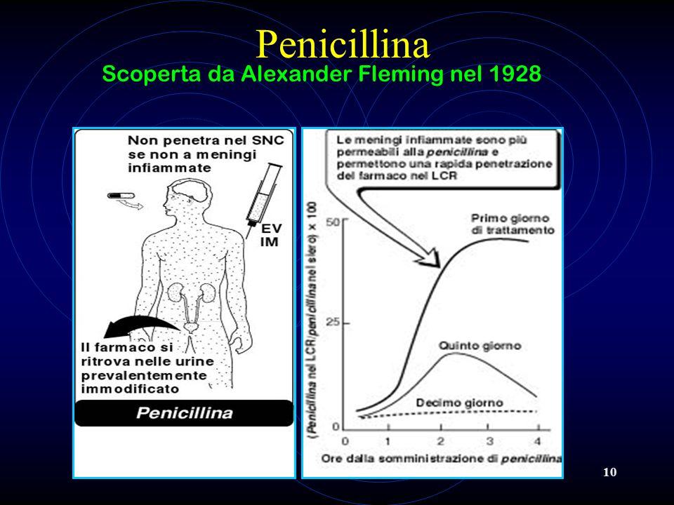 10 Penicillina Scoperta da Alexander Fleming nel 1928