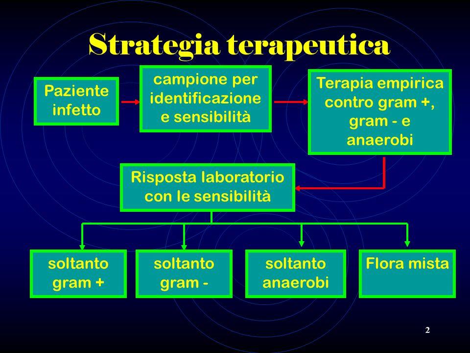 2 Strategia terapeutica Paziente infetto campione per identificazione e sensibilità Terapia empirica contro gram +, gram - e anaerobi Risposta laborat