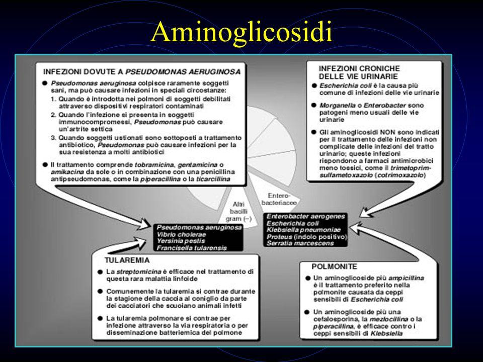 22 Aminoglicosidi