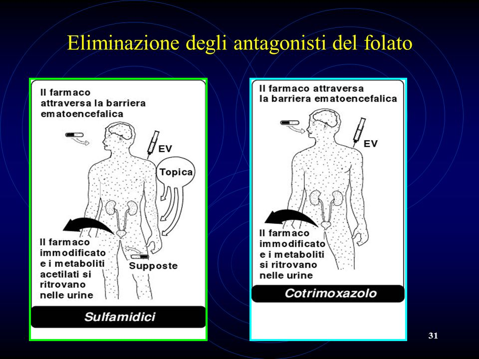 31 Eliminazione degli antagonisti del folato