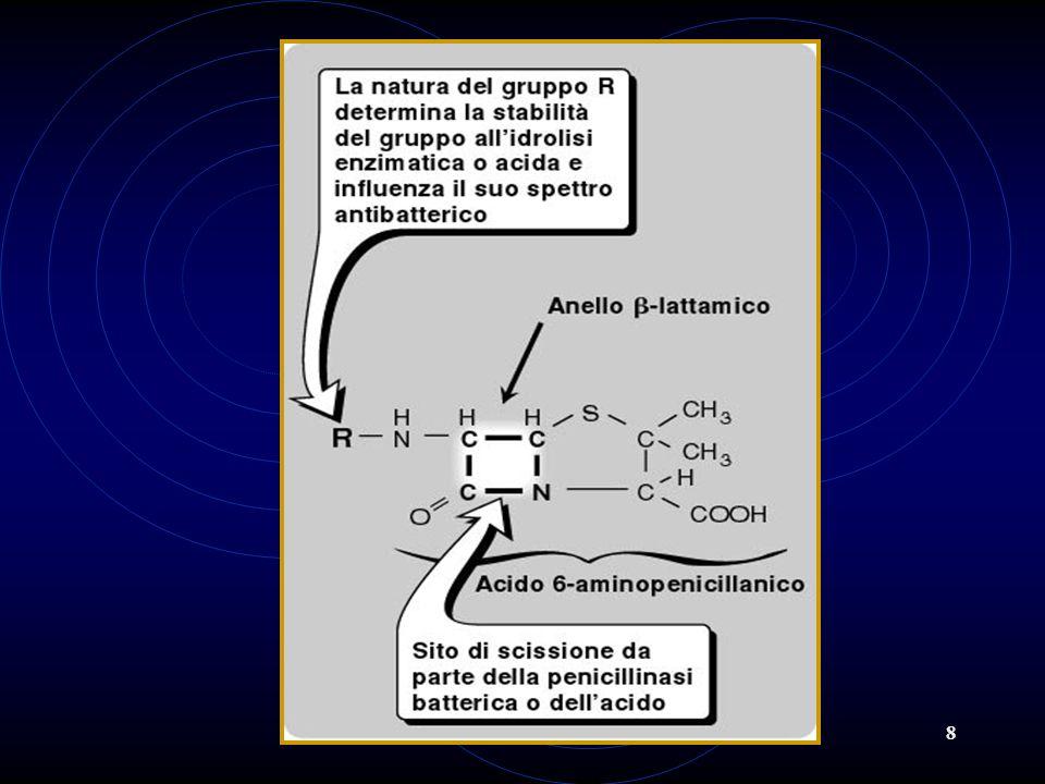 9 Associazione di penicilline con inibitori delle ß-lattamasi Tempo Numero di batteri vitali Acido clavulanico Controllo Amoxicillina Amoxicillina+Acido clavulanico