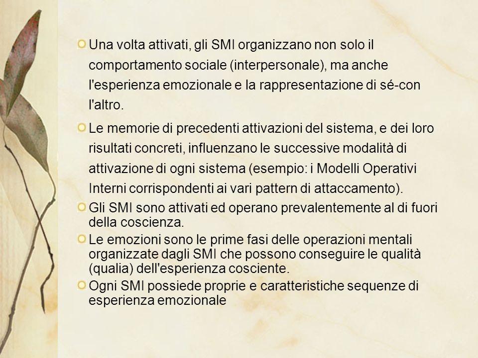 Una volta attivati, gli SMI organizzano non solo il comportamento sociale (interpersonale), ma anche l'esperienza emozionale e la rappresentazione di