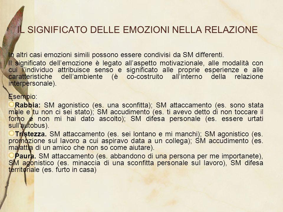 IL SIGNIFICATO DELLE EMOZIONI NELLA RELAZIONE In altri casi emozioni simili possono essere condivisi da SM differenti. Il significato dellemozione è l