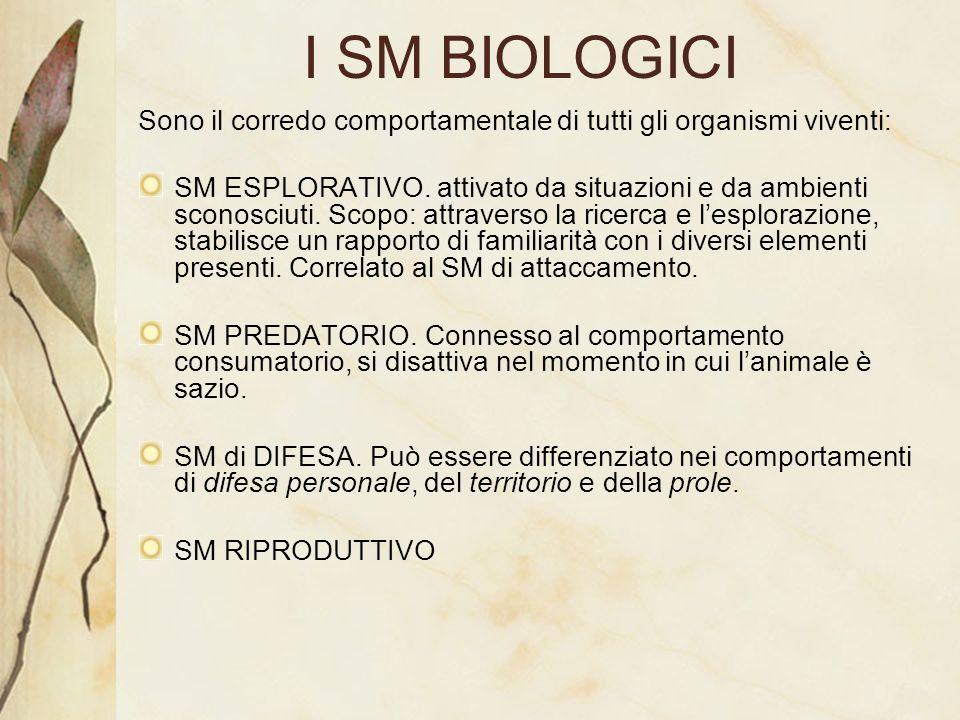 I SM BIOLOGICI Sono il corredo comportamentale di tutti gli organismi viventi: SM ESPLORATIVO. attivato da situazioni e da ambienti sconosciuti. Scopo