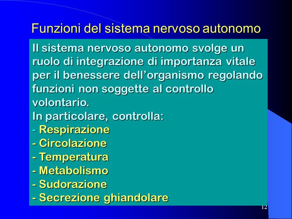 12 Funzioni del sistema nervoso autonomo Il sistema nervoso autonomo svolge un ruolo di integrazione di importanza vitale per il benessere dellorganismo regolando funzioni non soggette al controllo volontario.