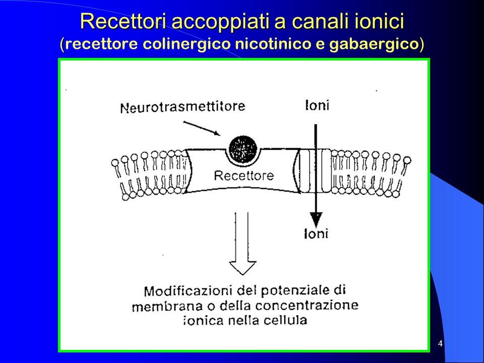 4 Recettori accoppiati a canali ionici () Recettori accoppiati a canali ionici ( recettore colinergico nicotinico e gabaergico )
