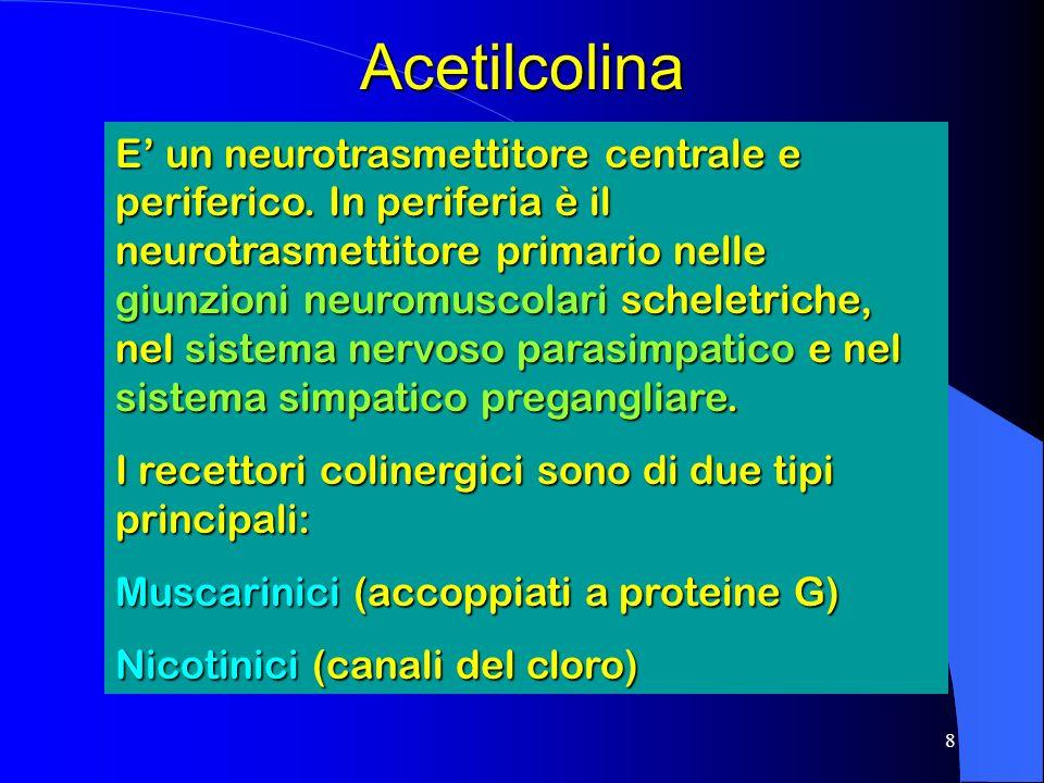 8Acetilcolina E un neurotrasmettitore centrale e periferico.
