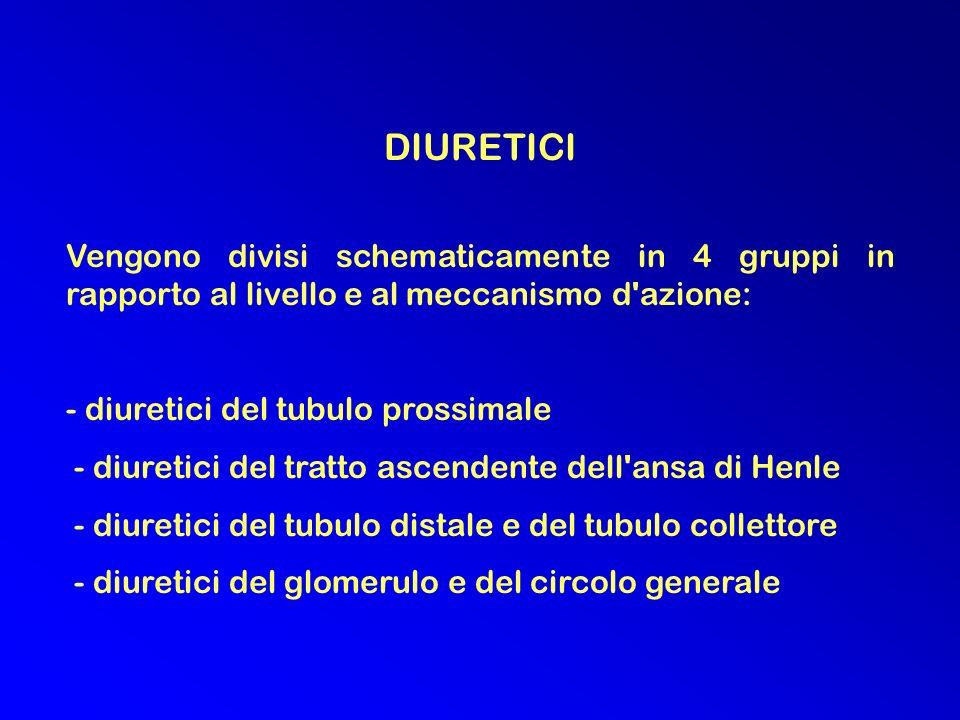DIURETICI Vengono divisi schematicamente in 4 gruppi in rapporto al livello e al meccanismo d azione: - diuretici del tubulo prossimale - diuretici del tratto ascendente dell ansa di Henle - diuretici del tubulo distale e del tubulo collettore - diuretici del glomerulo e del circolo generale