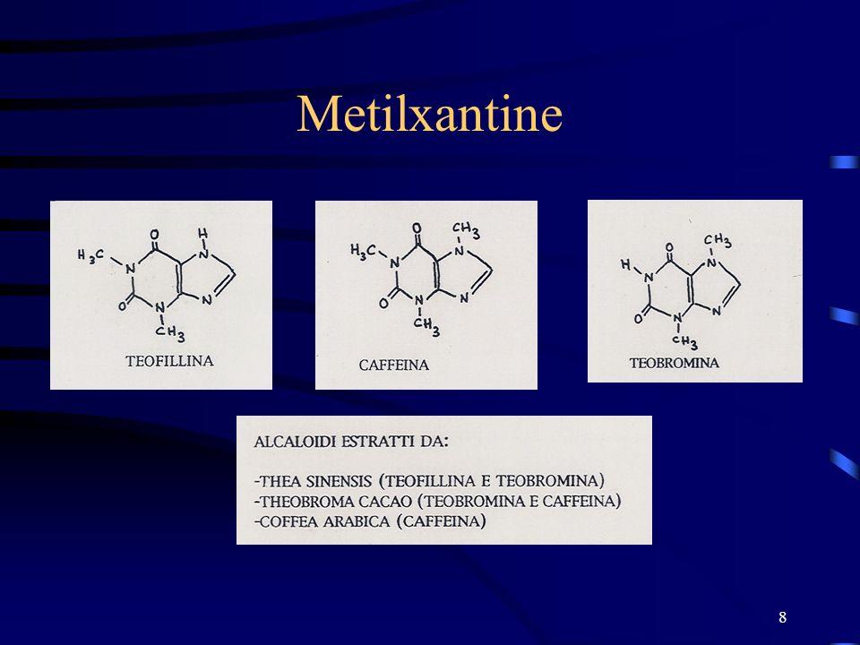 8 Metilxantine