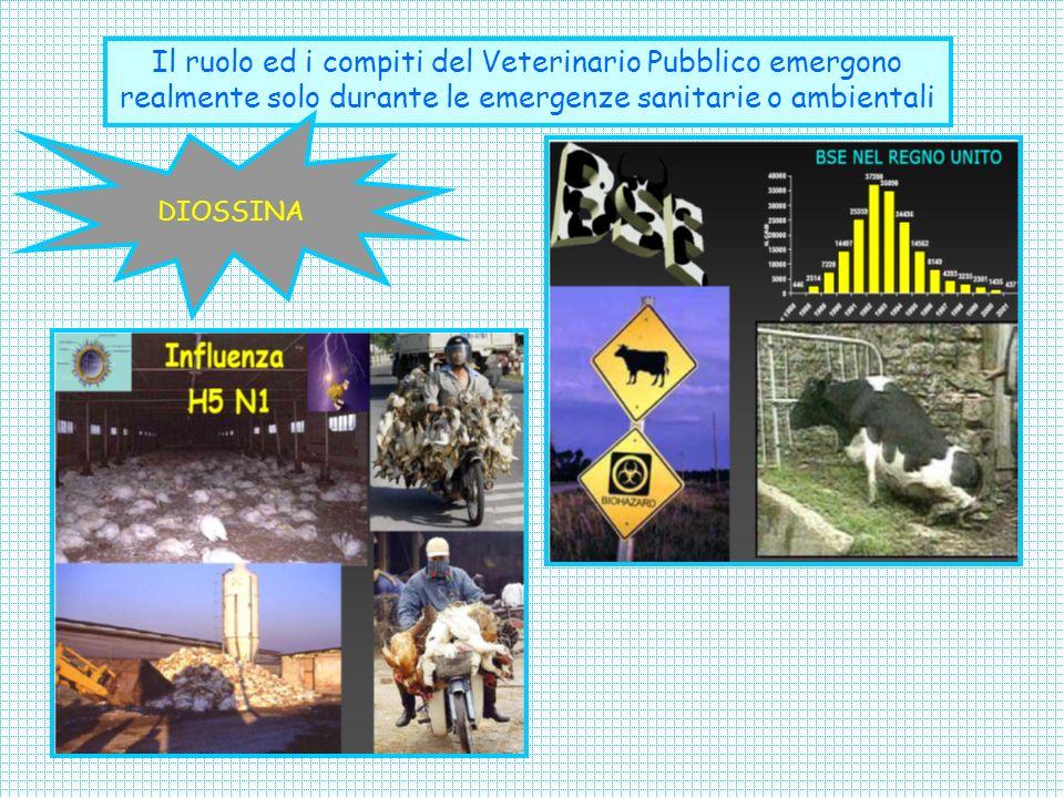 OBIETTIVO: Divulgare il corretto concetto di prevenzione in SPV; Dare evidenza alle attività del veterinario pubblico al fine aumentare la fiducia del cittadino/utente; Diffondere la conoscenza degli animali, delle loro caratteristiche fisiologiche, etologiche e produttive per un corretto rapporto uomo/natura;