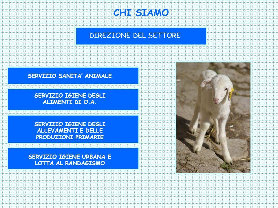 CHI SIAMO DIREZIONE DEL SETTORE SERVIZIO SANITA ANIMALE SERVIZIO IGIENE DEGLI ALIMENTI DI O.A.