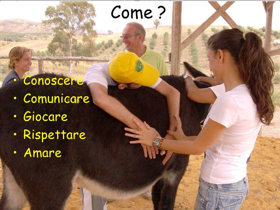 31/03/09Domenico Alaimo - AUSL 1 AG Come ? Conoscere Comunicare Giocare Rispettare Amare