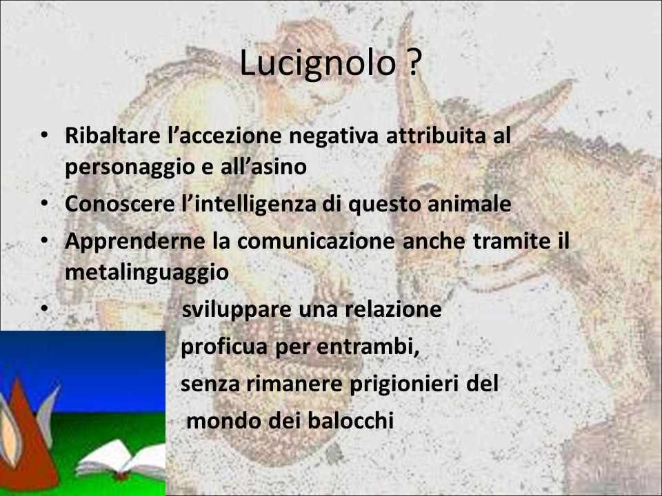 Lucignolo .