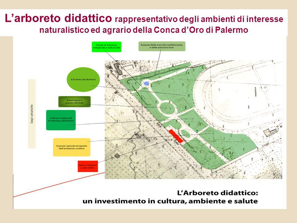 Larboreto didattico rappresentativo degli ambienti di interesse naturalistico ed agrario della Conca dOro di Palermo