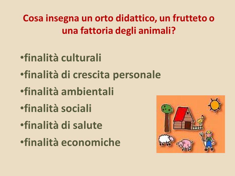 Cosa insegna un orto didattico, un frutteto o una fattoria degli animali? finalità culturali finalità di crescita personale finalità ambientali finali