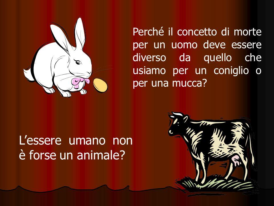 Perché il concetto di morte per un uomo deve essere diverso da quello che usiamo per un coniglio o per una mucca? Lessere umano non è forse un animale