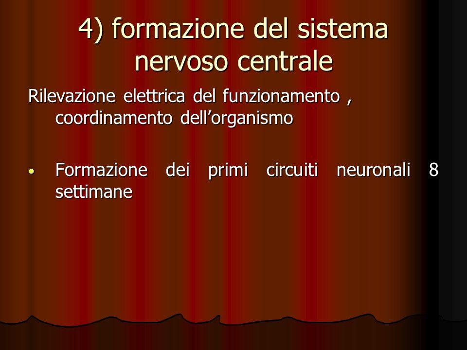 4) formazione del sistema nervoso centrale Rilevazione elettrica del funzionamento, coordinamento dellorganismo Formazione dei primi circuiti neuronal