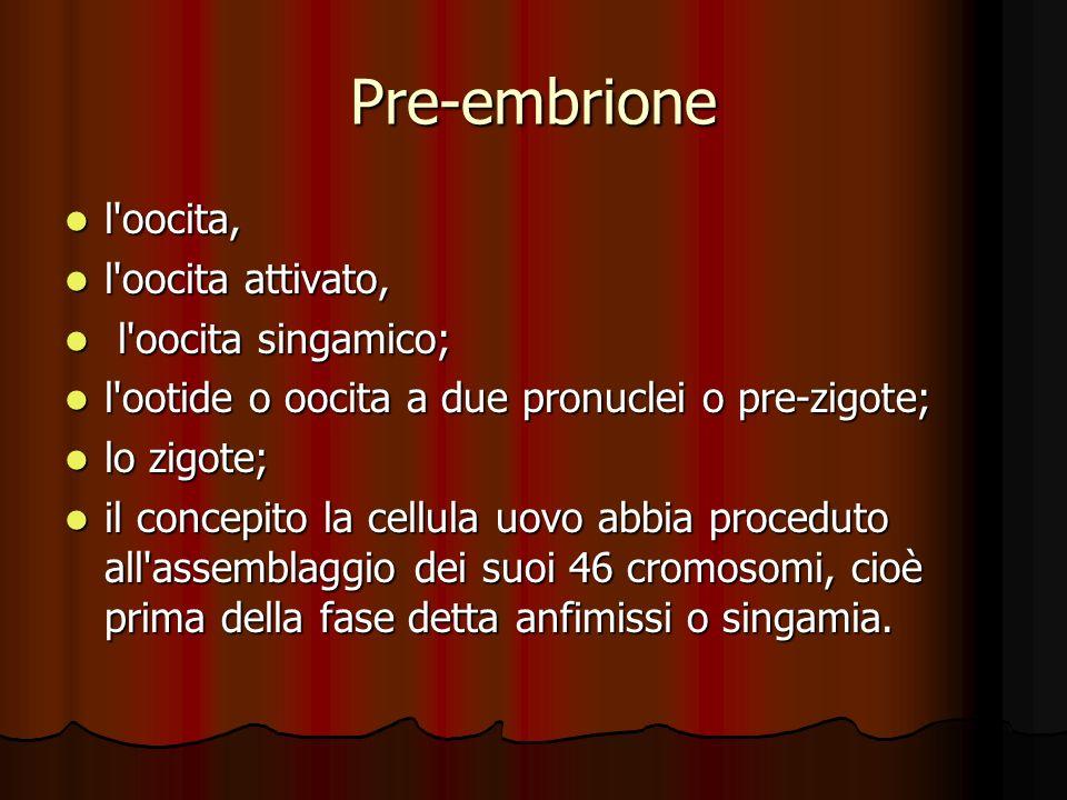 Pre-embrione l'oocita, l'oocita, l'oocita attivato, l'oocita attivato, l'oocita singamico; l'oocita singamico; l'ootide o oocita a due pronuclei o pre