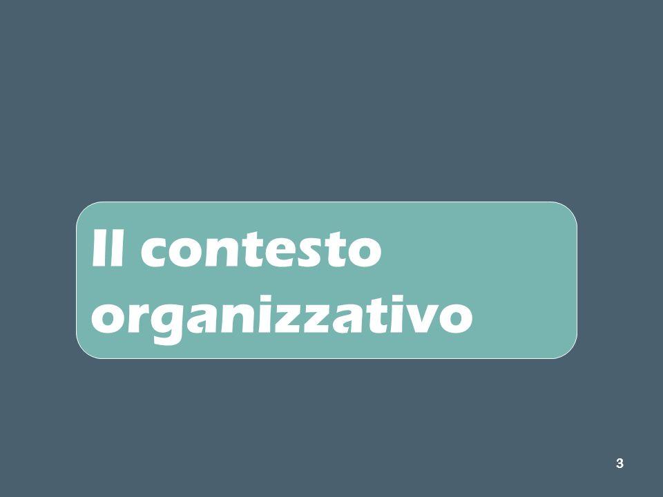3 Il contesto organizzativo