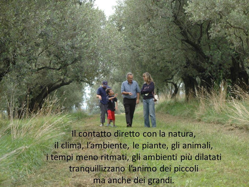 12multifunzionalita' Il contatto diretto con la natura, il clima, lambiente, le piante, gli animali, i tempi meno ritmati, gli ambienti più dilatati t