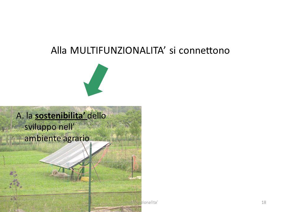 18multifunzionalita' Alla MULTIFUNZIONALITA si connettono A. la sostenibilita dello sviluppo nell ambiente agrario