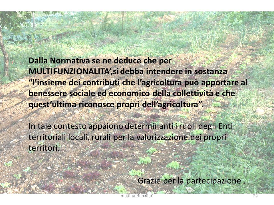 24multifunzionalita' Dalla Normativa se ne deduce che per MULTIFUNZIONALITA,si debba intendere in sostanza linsieme dei contributi che lagricoltura pu