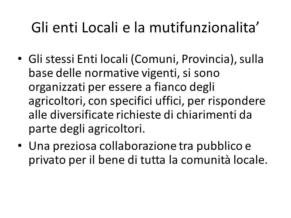 Gli enti Locali e la mutifunzionalita Gli stessi Enti locali (Comuni, Provincia), sulla base delle normative vigenti, si sono organizzati per essere a