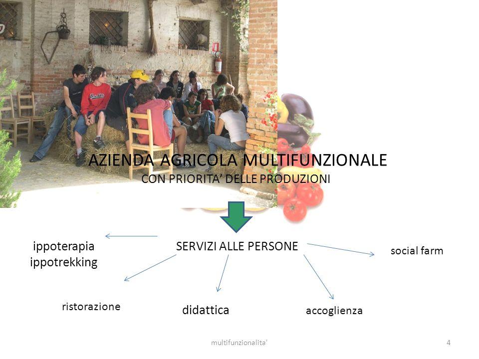 4multifunzionalita' AZIENDA AGRICOLA MULTIFUNZIONALE CON PRIORITA DELLE PRODUZIONI SERVIZI ALLE PERSONE accoglienza social farm ristorazione didattica