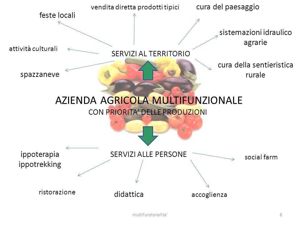 6multifunzionalita' AZIENDA AGRICOLA MULTIFUNZIONALE CON PRIORITA DELLE PRODUZIONI SERVIZI AL TERRITORIO accoglienza social farm ristorazione didattic