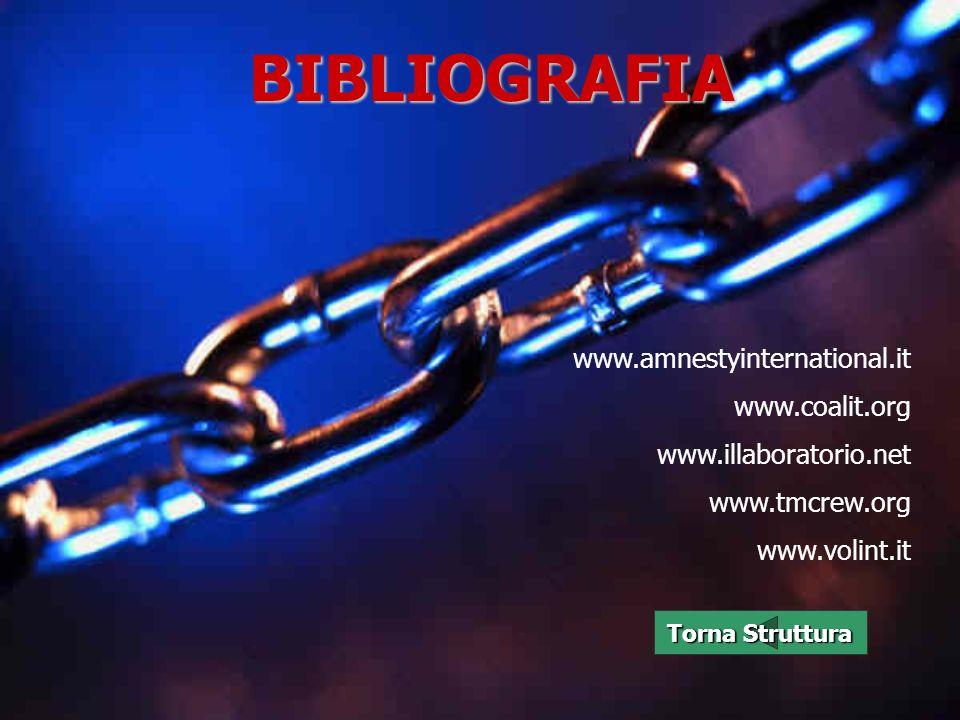 BIBLIOGRAFIA www.amnestyinternational.it www.coalit.org www.illaboratorio.net www.tmcrew.org www.volint.it Torna Struttura Torna Struttura
