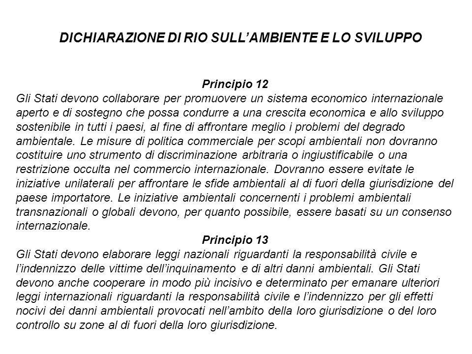 Principio 12 Gli Stati devono collaborare per promuovere un sistema economico internazionale aperto e di sostegno che possa condurre a una crescita ec