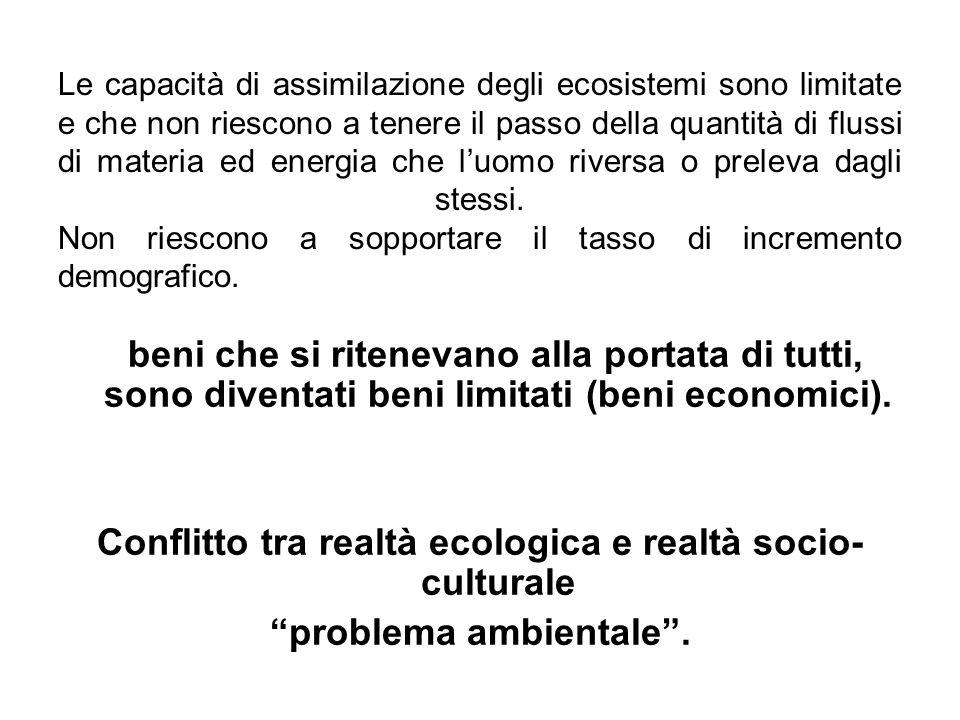 AMBIENTE Articolo 174 1.