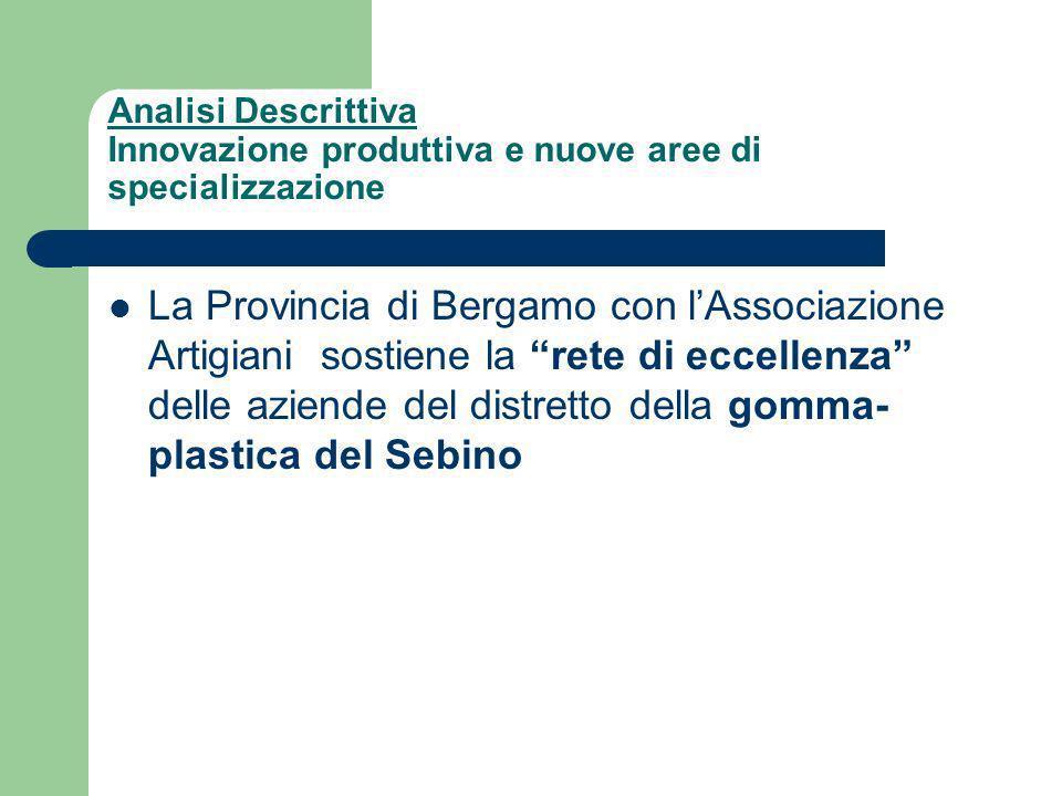 Analisi Descrittiva Innovazione produttiva e nuove aree di specializzazione La Provincia di Bergamo con lAssociazione Artigiani sostiene la rete di eccellenza delle aziende del distretto della gomma- plastica del Sebino