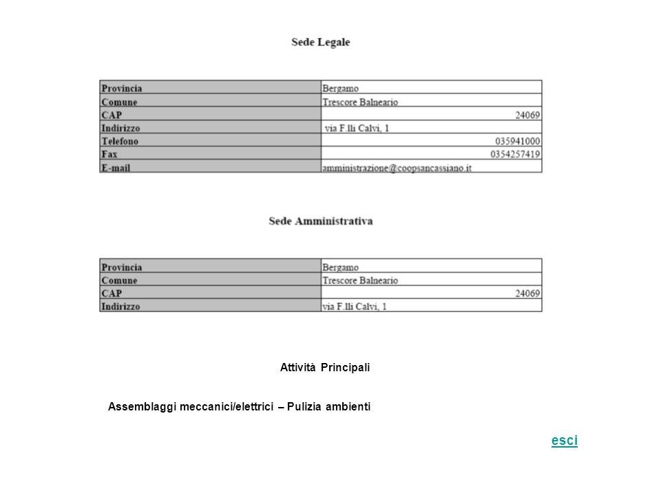 Attività Principali Assemblaggi meccanici/elettrici – Pulizia ambienti