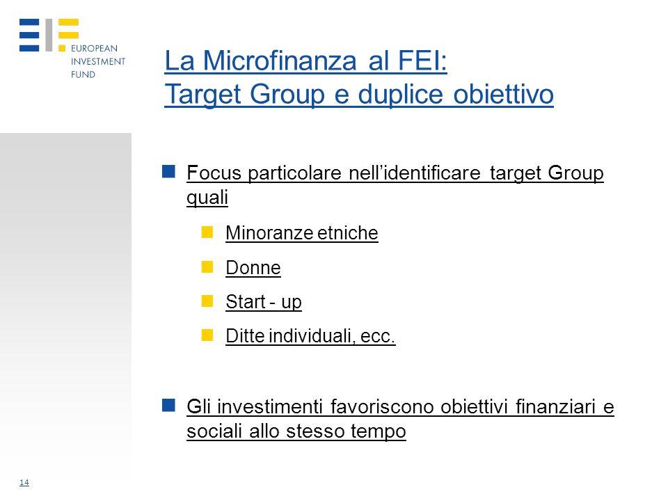 14 La Microfinanza al FEI: Target Group e duplice obiettivo Focus particolare nellidentificare target Group quali Minoranze etniche Donne Start - up Ditte individuali, ecc.