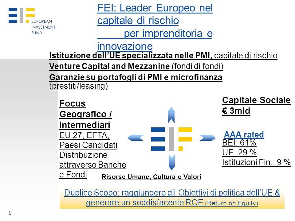 3 FEI: Leader Europeo nel capitale di rischio per imprenditoria e innovazione Duplice Scopo: raggiungere gli Obiettivi di politica dellUE & generare un soddisfacente ROE (Return on Equity) Istituzione dellUE specializzata nelle PMI, capitale di rischio Venture Capital and Mezzanine (fondi di fondi) Garanzie su portafogli di PMI e microfinanza (prestiti/leasing) Capitale Sociale 3mld BEI: 61% UE: 29 % Istituzioni Fin.: 9 % Focus Geografico / Intermediari EU 27, EFTA, Paesi Candidati Distribuzione attraverso Banche e Fondi AAA rated Risorse Umane, Cultura e Valori