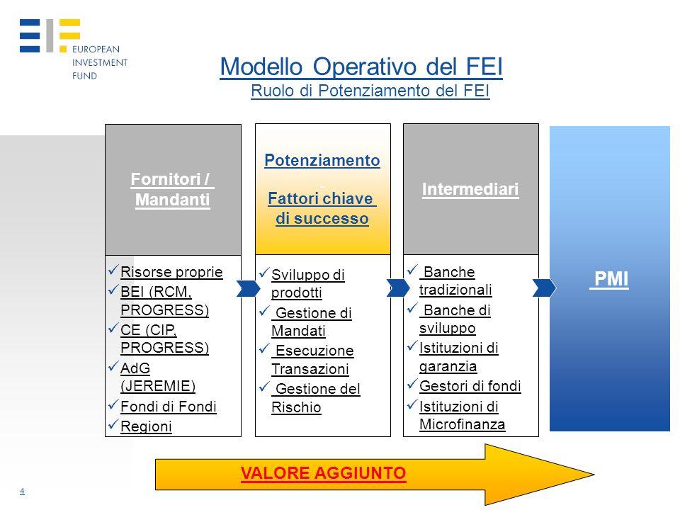 4 Modello Operativo del FEI VALORE AGGIUNTO Risorse proprie BEI (RCM, PROGRESS) CE (CIP, PROGRESS) AdG (JEREMIE) Fondi di Fondi Regioni Sviluppo di prodotti Gestione di Mandati Esecuzione Transazioni Gestione del Rischio Banche tradizionali Banche di sviluppo Istituzioni di garanzia Gestori di fondi Istituzioni di Microfinanza PMI Fornitori / Mandanti Potenziamento Fattori chiave di successo Intermediari Ruolo di Potenziamento del FEI